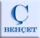 Asociacion Española de la Enfermedad de Behcet